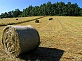 Bales of Hay on Farmland in Woolhampton - geograph.org.uk - 26846.jpg