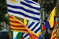 Banderes Manifestació 10 Juliol 2010 Barcelona.jpg