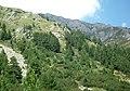 Bansko, Bulgaria - panoramio (34).jpg