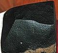Basalt ventifact (Dry Valleys, Antarctica) 2 (31610829443).jpg