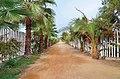 Beachwalk (61801137).jpeg