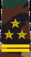Belarus MIA—04 Colonel rank insignia (Camouflage).png