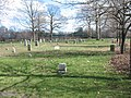 Bennington Street Burying Ground (2).jpg