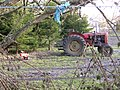 Big tractor, little tractor - geograph.org.uk - 95265.jpg