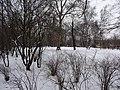 Blüherpark (103).jpg