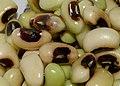Black-eyed peas close up.jpg