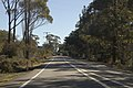 Blackheath NSW 2785, Australia - panoramio (7).jpg