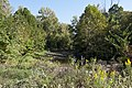Blacklick Creek in Blacklick Woods 1.jpg