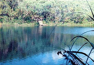 Blue Lake National Park Protected area in Queensland, Australia