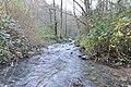 Bolintxu ibaia - Río Bolintxu (31) (39556480660).jpg