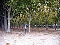 Bordeaux - panoramio (1).jpg