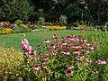 Botanical garden in Bamberg-20200728-RM-161713.jpg
