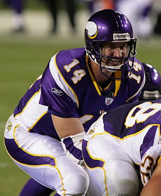 Brad Johnson (American football) - Johnson with the Minnesota Vikings in 2006