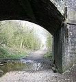 Bridge Over Former Railway Track - geograph.org.uk - 375840.jpg