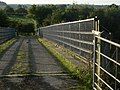 Bridge over the A38 - geograph.org.uk - 1485163.jpg
