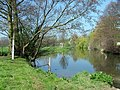 Brockley Meadow along the River Teme - geograph.org.uk - 1260415.jpg