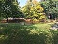 Bronx Zoo - NY - USA - panoramio (3).jpg