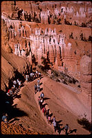 Bryce Canyon National Park BRCA0656.jpg