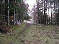 Bryn Bwbach - geograph.org.uk - 142670.jpg