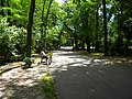Bucuresti, Romania. PARCUL HERASTRAU. Acum Parcul Regele Mihai I. Zi de repaus. (B-II-a-A-18802).jpg