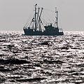 Buesum am strand 12.11.2012 13-25-48.jpg