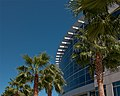 Building and Palm Trees (6125687828).jpg