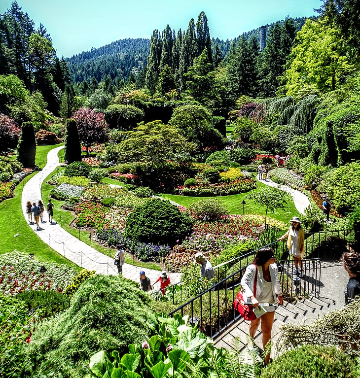 File butchart gardens victoria british columbia 29191424376 jpg wikimedia commons for Victoria s secret victoria gardens