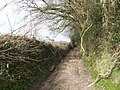 Byway to Cleverhayes Farm - geograph.org.uk - 366531.jpg