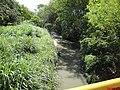 Córrego Guariba, após passar pela cidade e seguindo para a sua foz no Rio Mogi Guaçu - panoramio.jpg