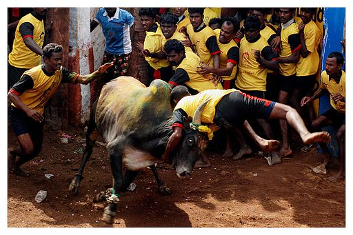 Protests against ban on Jallikattu and related posts on Facebook suggest a course correction that can save Tamil politics from losing its relevance