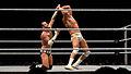 CM Punk vs Del Rio.jpg