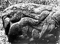 COLLECTIE TROPENMUSEUM Stenen beeld van o.a. olifant uit Lematang Boven-Palembang TMnr 10000983.jpg