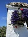 Cafe on Inishmore (6007848975).jpg