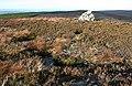 Cairn on Bracken Noits - geograph.org.uk - 581901.jpg