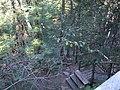 Caledon Trail 1 (5091395872).jpg