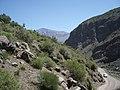 Camino al Embalse El Yeso. - panoramio (15).jpg