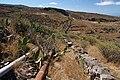 Camino de Chacoroche - panoramio (1).jpg