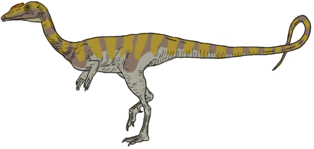 Camposaurus arizonensis