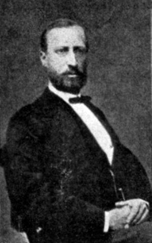 Carl Stål - Image: Carl Stål 1833 1878