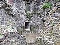 Carmarthen Castle - geograph.org.uk - 1188687.jpg