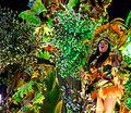 Carnaval 2014 - Rio de Janeiro (12981758325).jpg