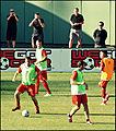 Carra, Skrtel, Enrique, Sterling.jpg