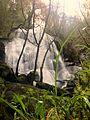 Cascata das Lages Altas (26193270646).jpg