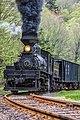 Cass Scenic Railroad State Park, WV.jpg