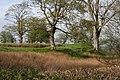 Castle Corner - geograph.org.uk - 794715.jpg