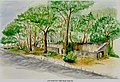 Caswell Dunes WWI Rifle Range Painting.jpg