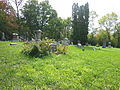 Cemetery view 2.jpg