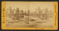 Center of falls, from Robert N. Dennis collection of stereoscopic views.png
