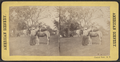Central Park, N.Y, from Robert N. Dennis collection of stereoscopic views 8.png