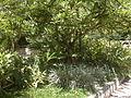 Centro Medico Docente La Trinidad (CMDLT) 2012 077.jpg